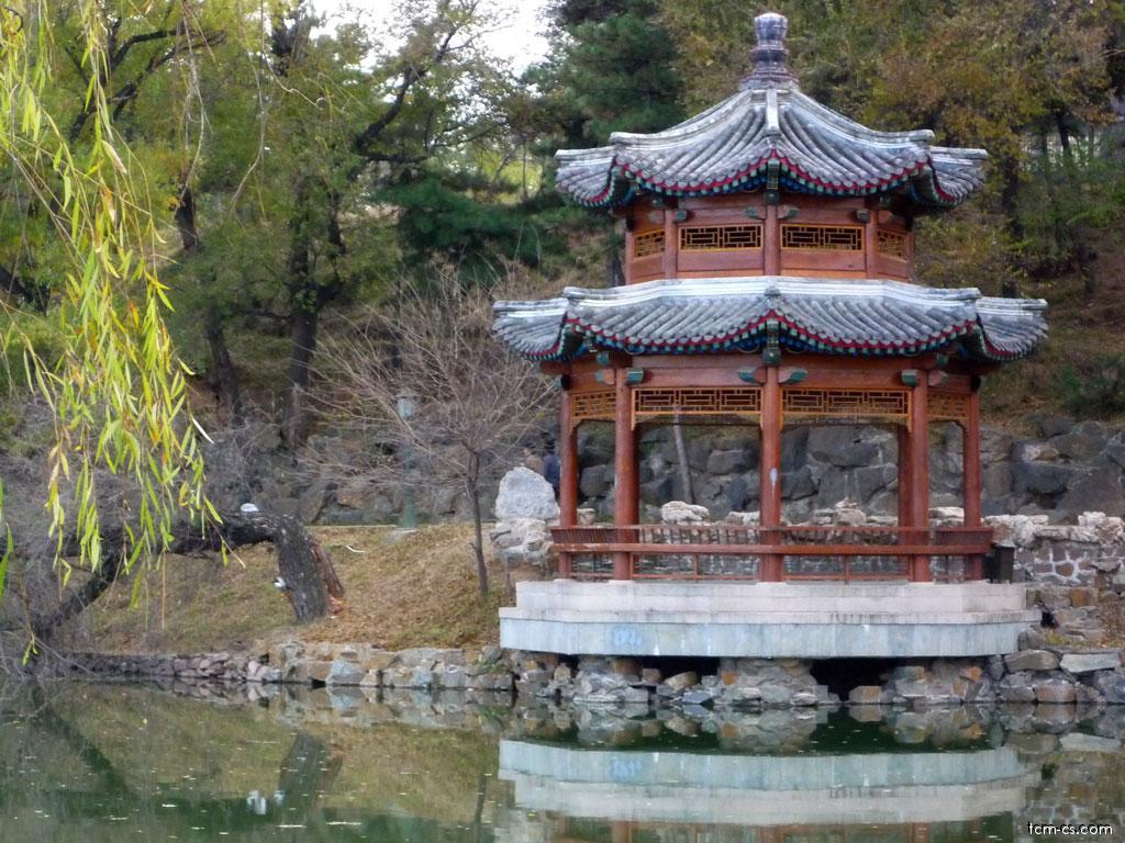 Čínská architektura