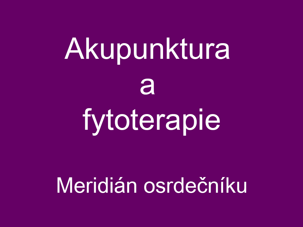 Akupunktura a fytoterapie - dráha osrdečníku