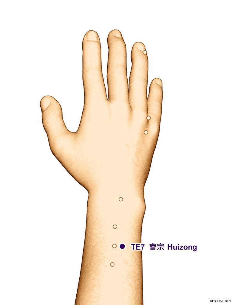 TE07 - chuej-cung (Huizong)