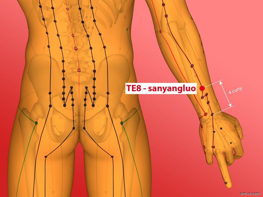 TE08 - san-jang-luao (Sanyangluo)