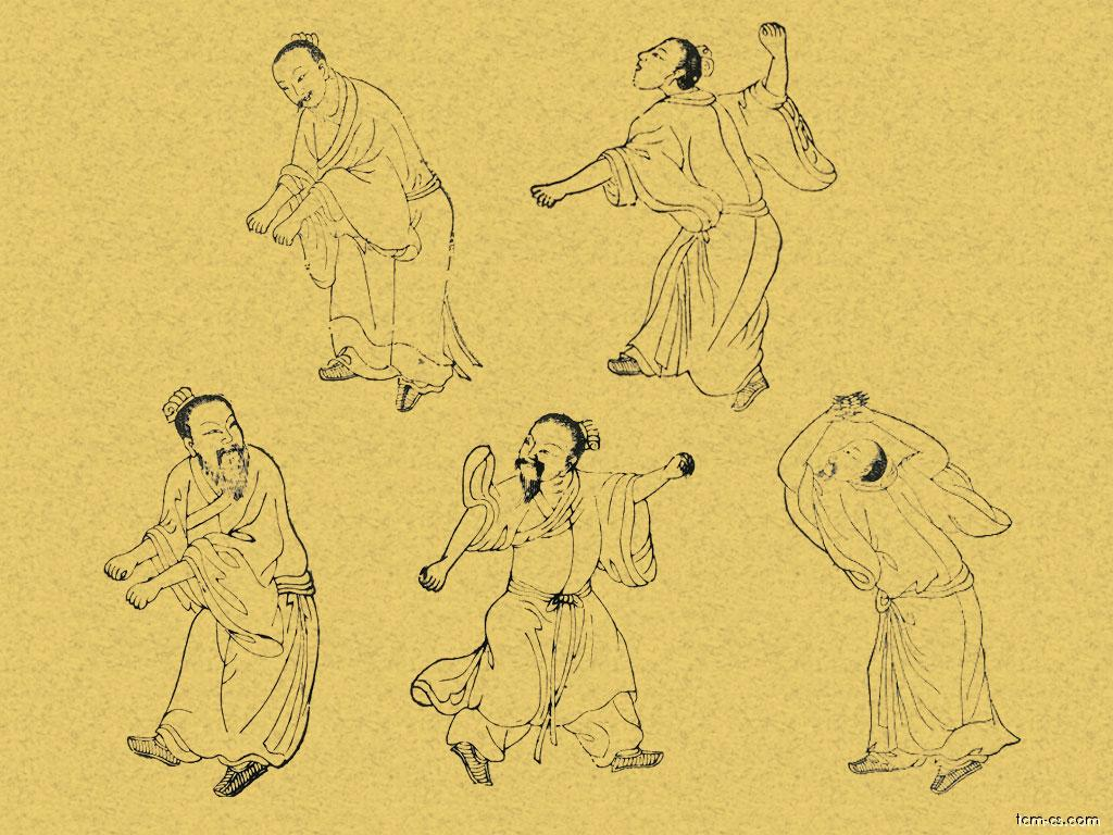 Představení pěti zvířat (Wuqinxi)