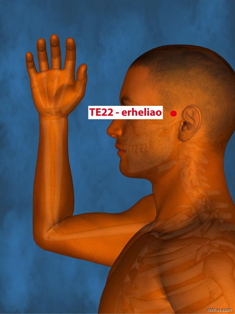 TE22 - er-che-liao (Erheliao)