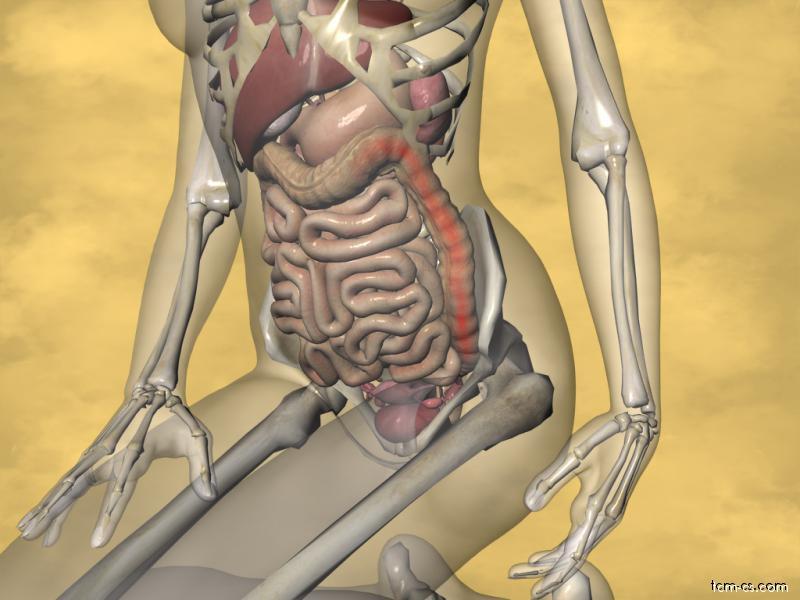 Ulcerózní kolitis