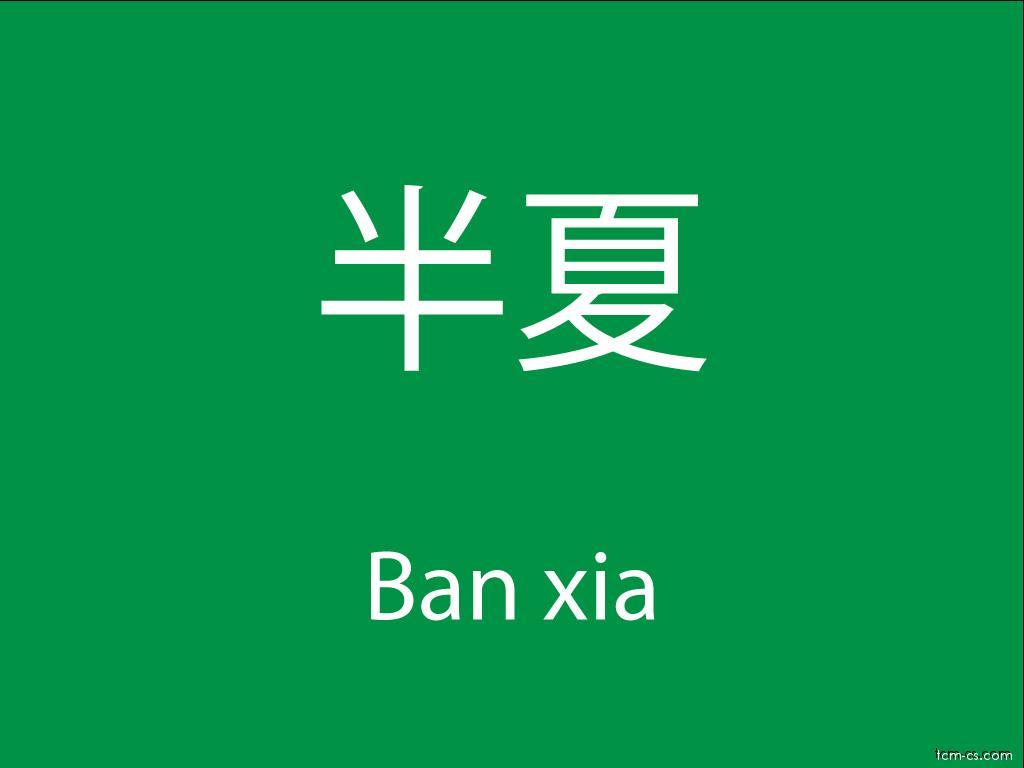 Čínské byliny (Ban xia)
