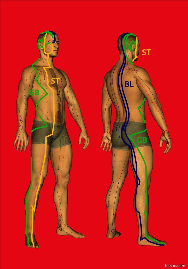 Tři jangové dráhy nohy (Zu san yang jing)