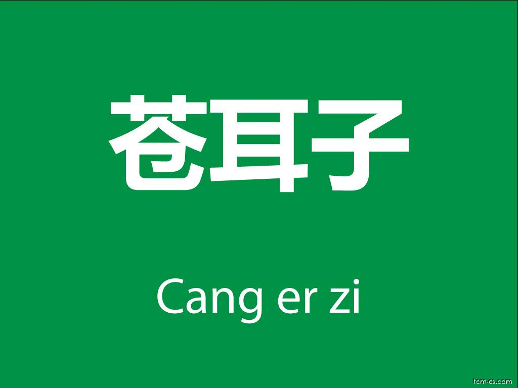Čínské byliny (Cang er zi)