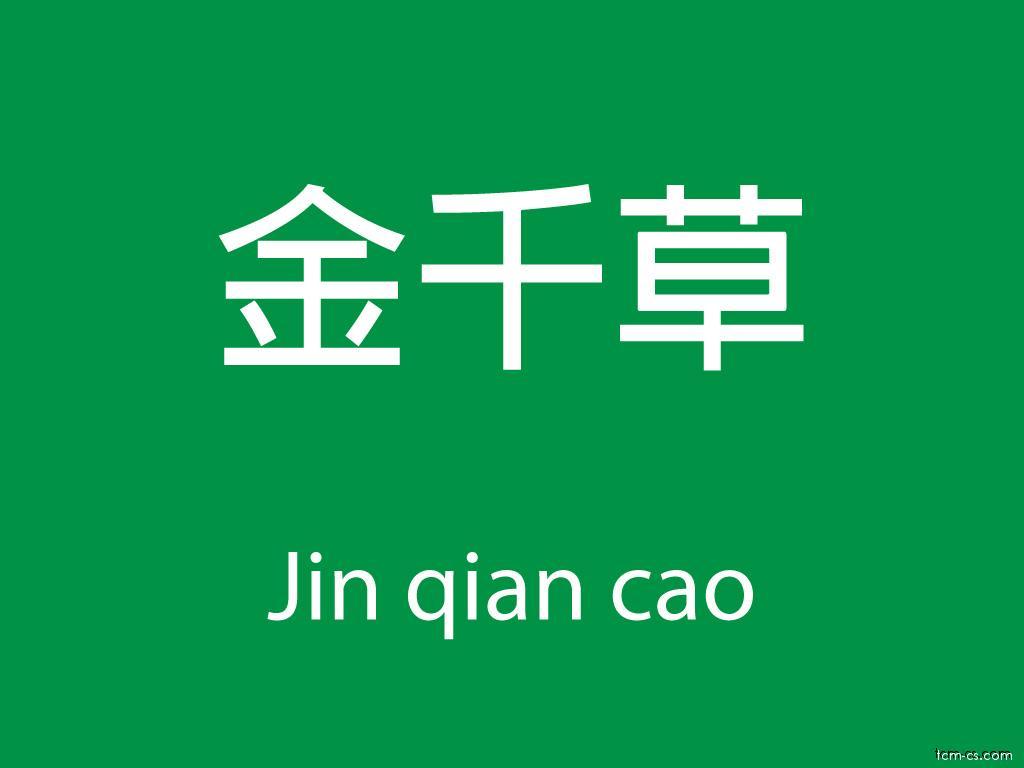 Čínské byliny (Jin qian cao)