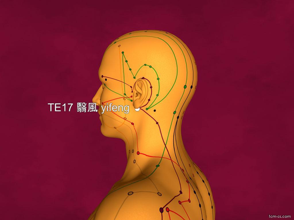 TE17 - i-feng (Yifeng)