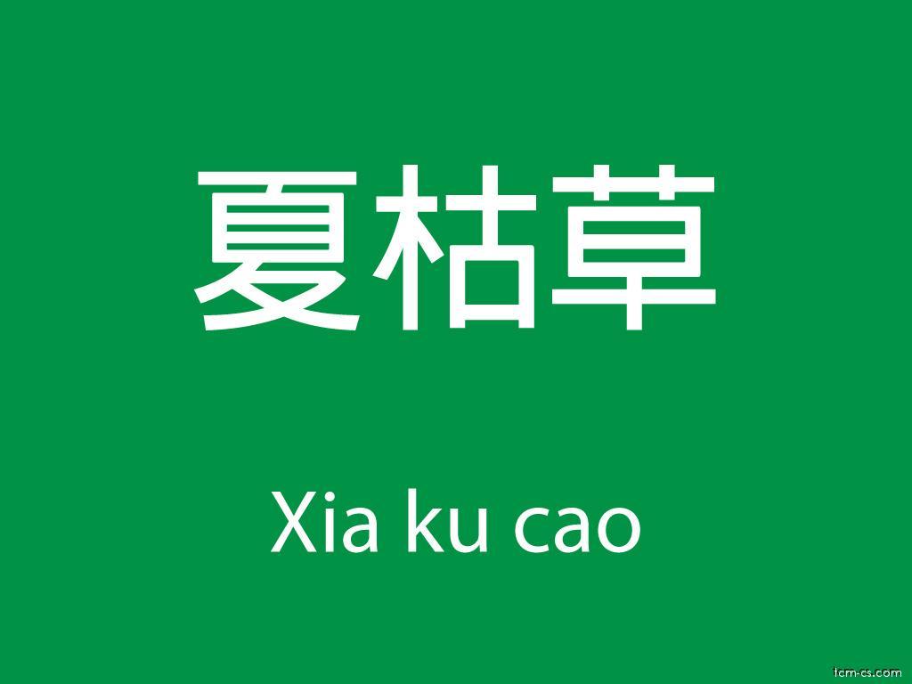 Čínské byliny (Xia ku cao)