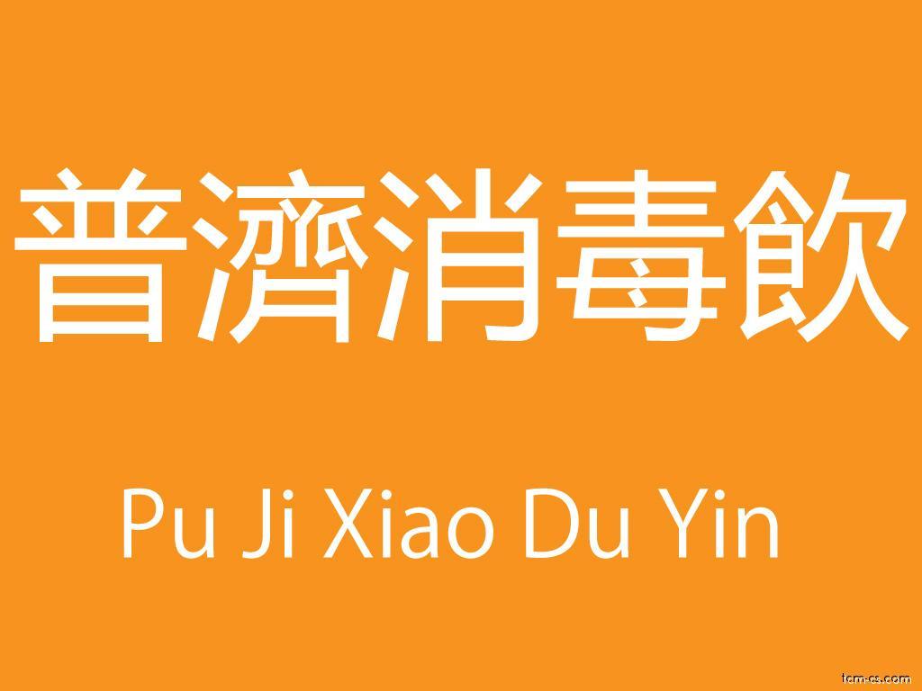 Čínské směsi (Pu Ji Xiao Du Yin)