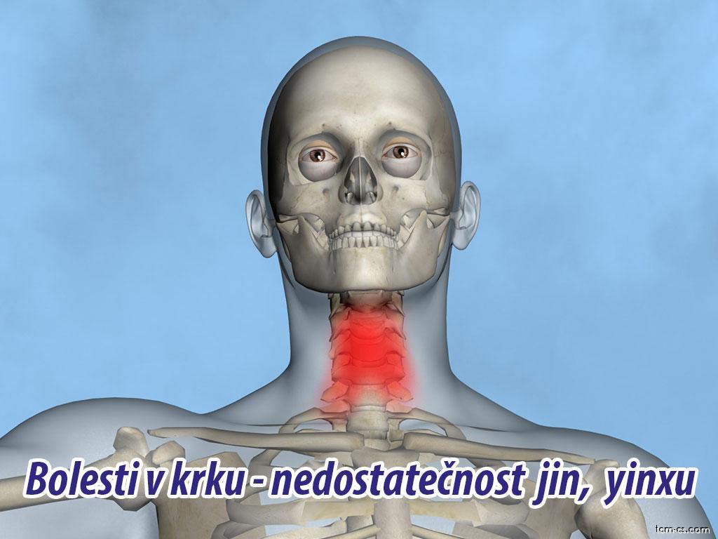 Bolesti v krku - nedostatečnost jin, yinxu