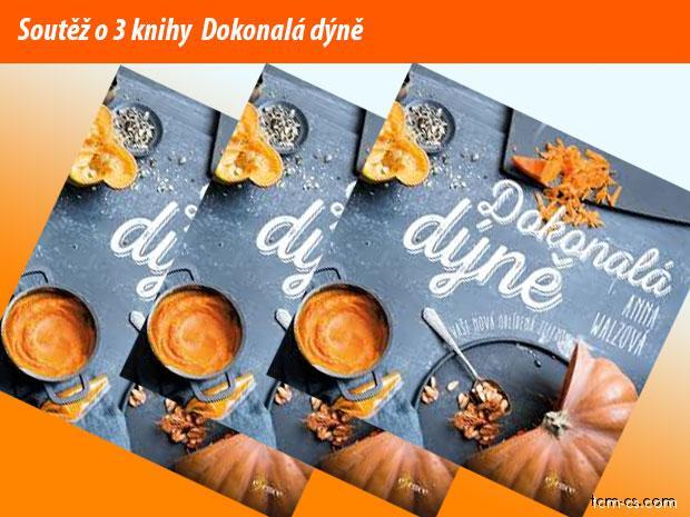 https://www.tcm-cs.com/images_forum/gallery/10/3435-soutez-dokonala-dyne.jpg
