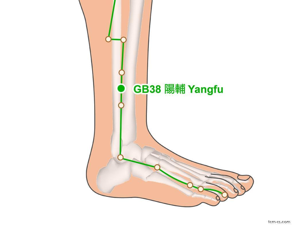 GB38 - jang-fu (Yangfu)