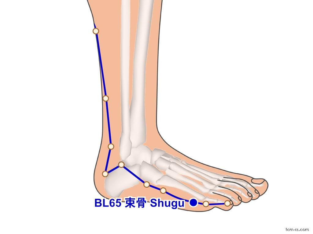BL65 - šu-ku (Shugu)