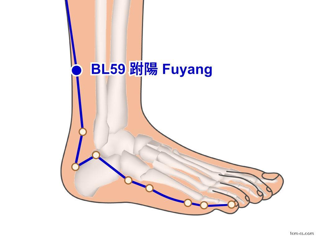 BL59 - fu-jang (Fuyang)