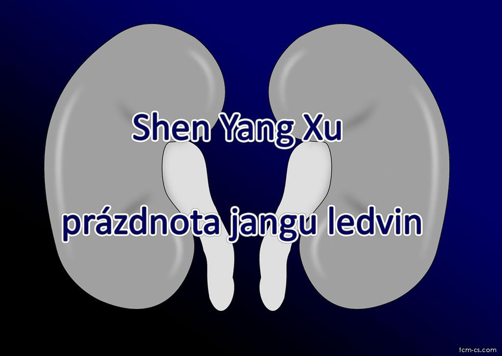 Prázdnota jangu ledvin (Shen yang xu)