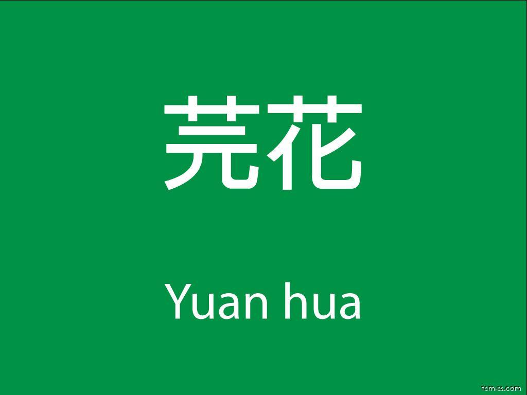 Čínské byliny (Yuan hua)