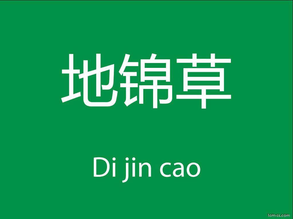 Čínské byliny (Di jin cao)