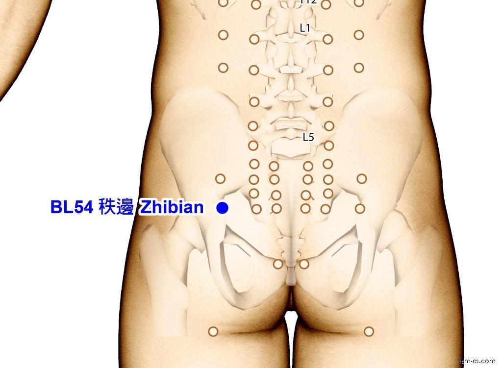 BL54 - č-pien (Zhibian)