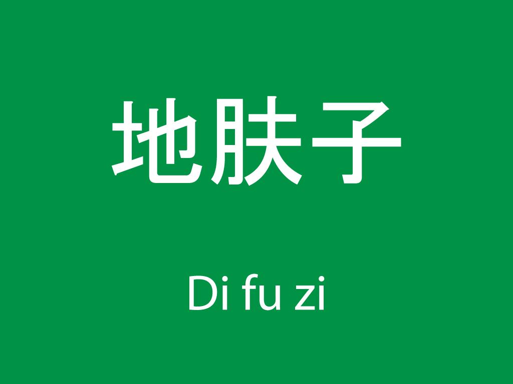 Čínské byliny (Di fu zi)