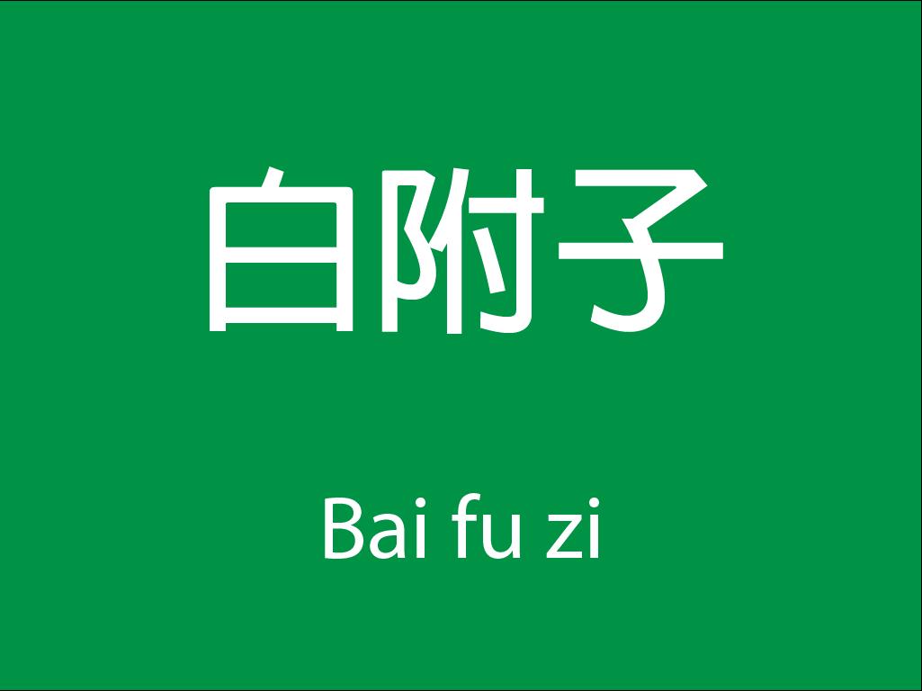 Čínské byliny (Bai fu zi)
