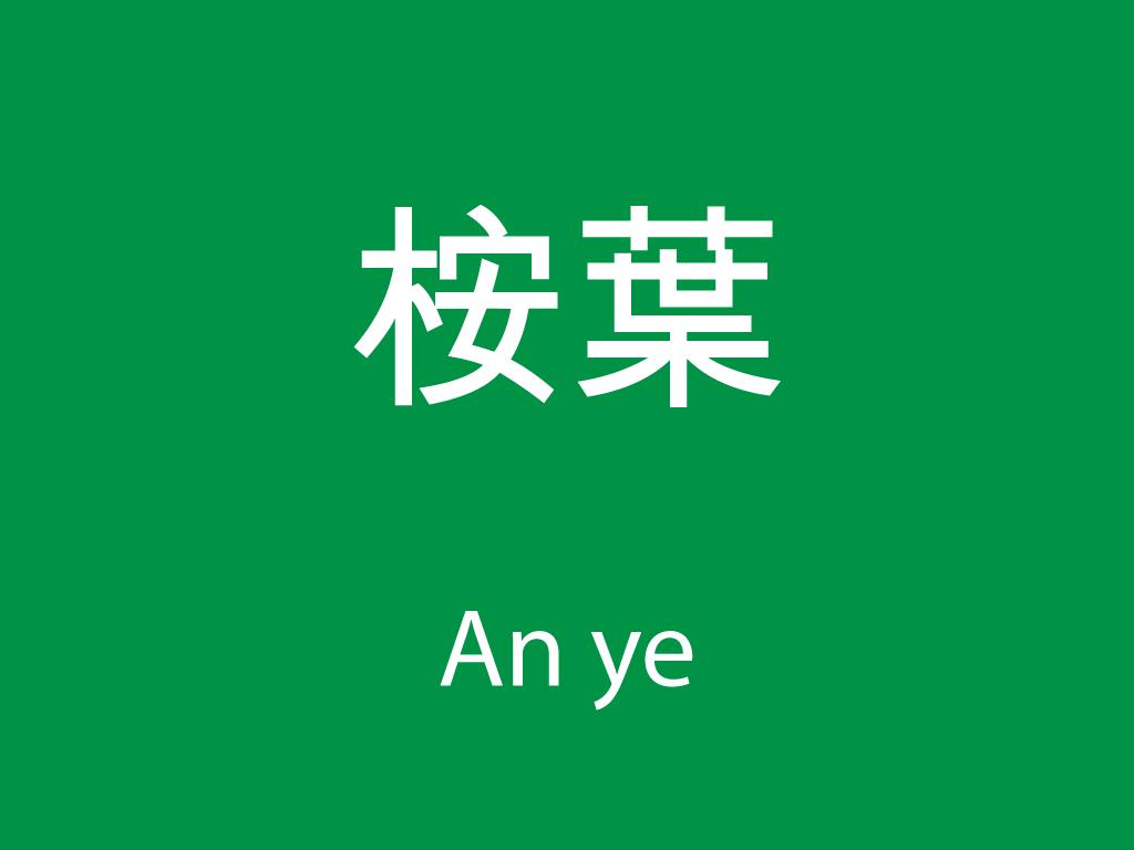 Čínské byliny (An ye)