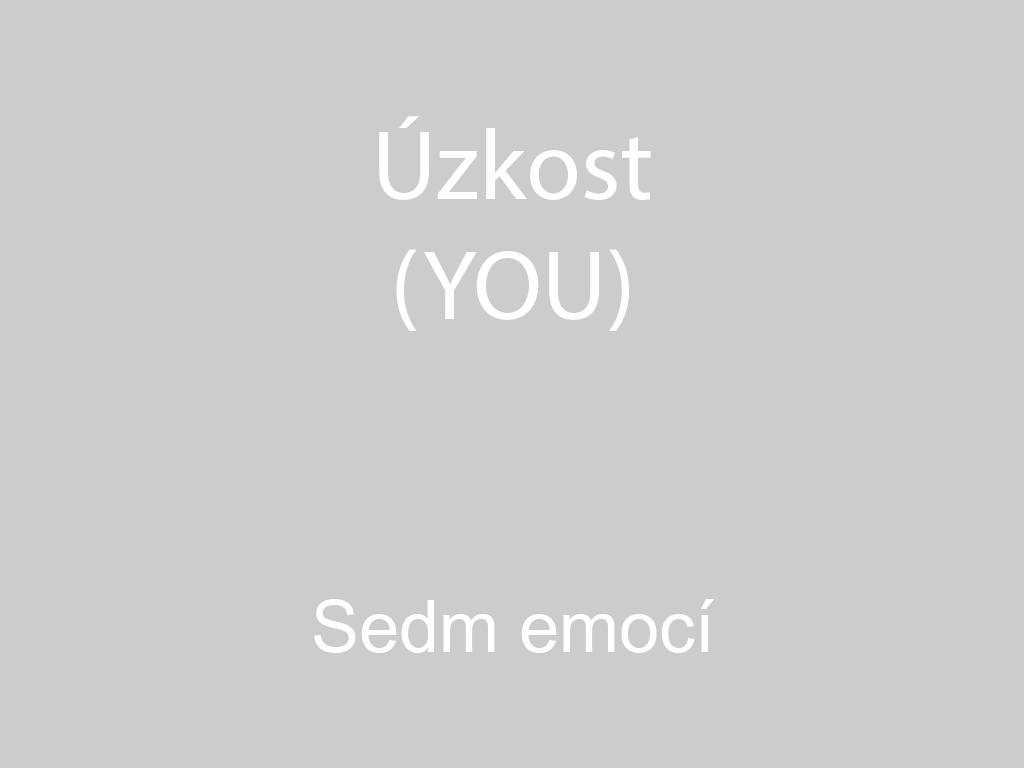 Úzkost - ustaranost, lekavost, zármutek (You)