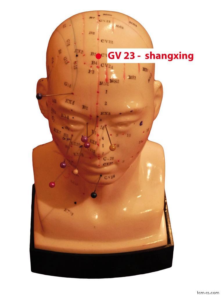 GV23 - šang-sin (Shangxing)