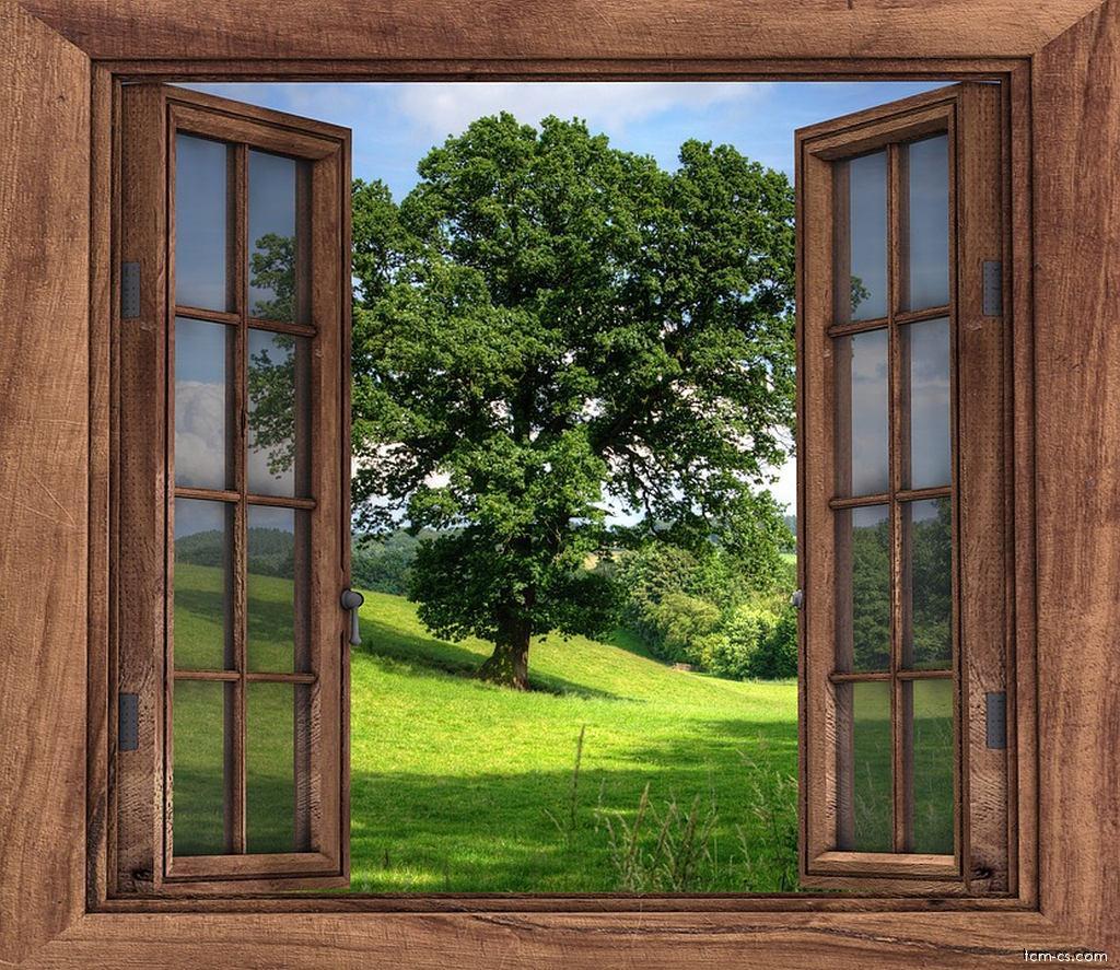 Pokoj s výhledem