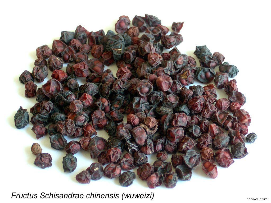 Klanopraška čínská - sušené plody (Wuweizi)